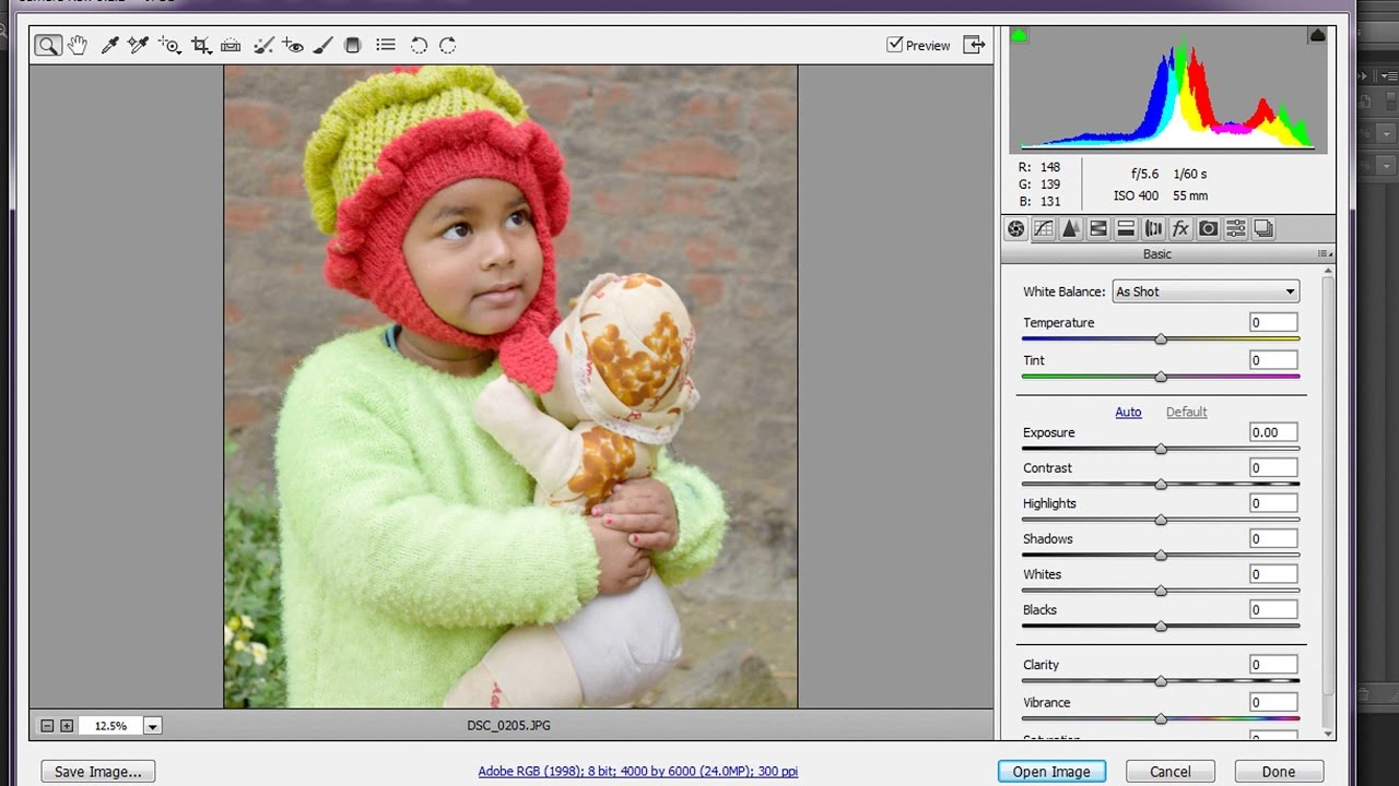photoshop camera raw plugin 7.0 download