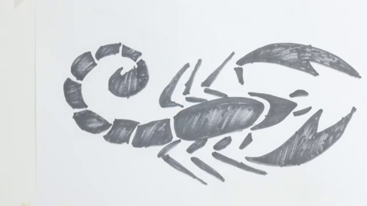 How To Draw Scorpion Tribal Tattoo Youtube