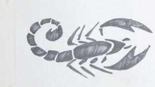 How to draw scorpion tribal tattoo