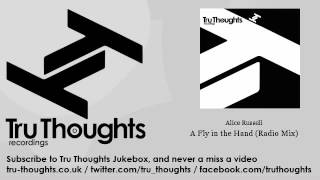 Alice Russell - A Fly in the Hand - Radio Mix - Tru Thoughts Jukebox