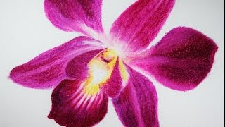 How to Draw a Flower With Oil Pastels Como Dibujar una Flor