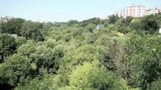 Поездка в Брянск