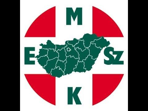 Hungarian Nurse Recruiting Campaign