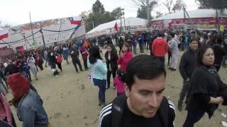 UNA PEQUEÑA MUESTRA DE LAS FONDAS PARQUE O´HIGGINS 2015
