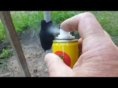 Защита от муравьёв