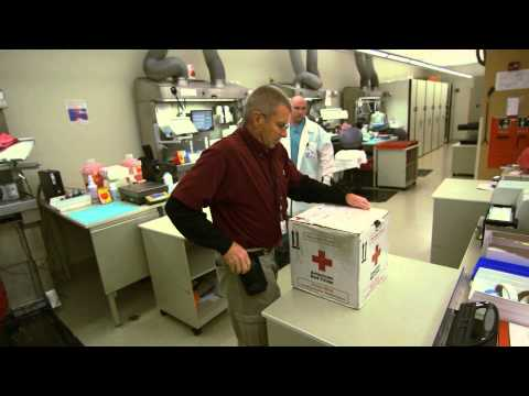 Special Delivery - Working as a Courier at Intermountain Healthcare