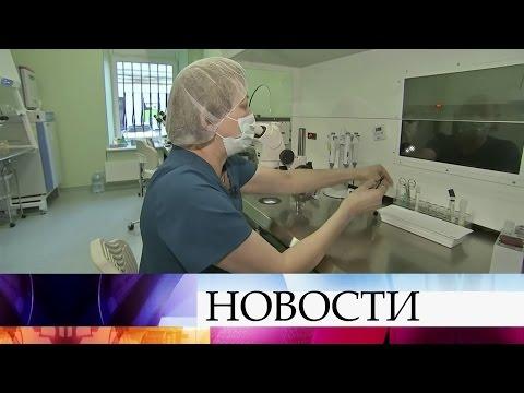 Уникальный судебный процесс вЧеркесске: разведенные супруги немогут поделить замороженные эмбрионы