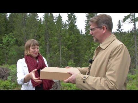 """La """"biblioteca del futuro"""" crece en un bosque de Oslo"""