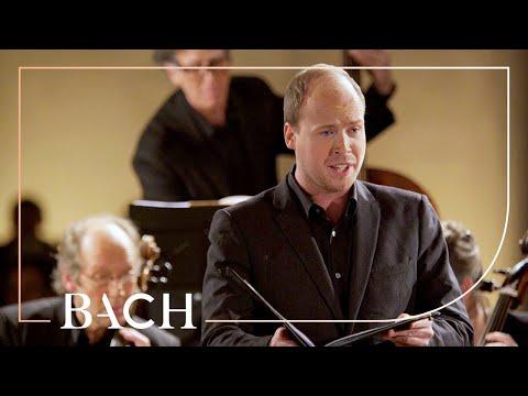 Bach - Cantata Widerstehe Doch Der Sünde BWV 54 - Mortensen | Netherlands Bach Society