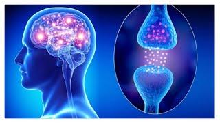 Cum pot accesa informatii mai usor din Creier? COACHING BUJOR