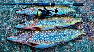 Рыбалка на ЩУКУ СЕЗОН 2021