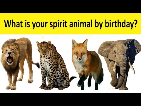 what-is-your-spirit-animal-by-birthday?-#personality_test