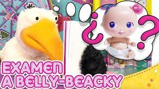 Aprende el lenguaje de los BELLIES! 👶💬 ¿Aprobará Belly-Beacky su EXAMEN?