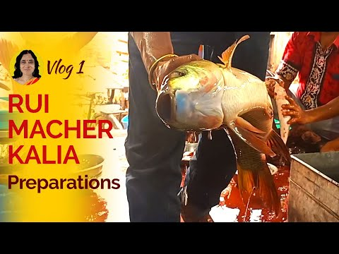 vlog-1-|-preparations-for-our-next-recipe---rui-macher-kalia-|coming-soon|from-ahar-bangla's-kitchen