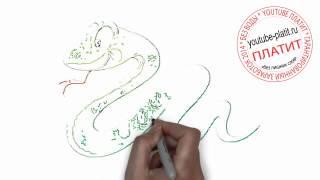 Нарисованные карандашом животные  Как нарисовать поэтапно карандашом доброго зеленого змея