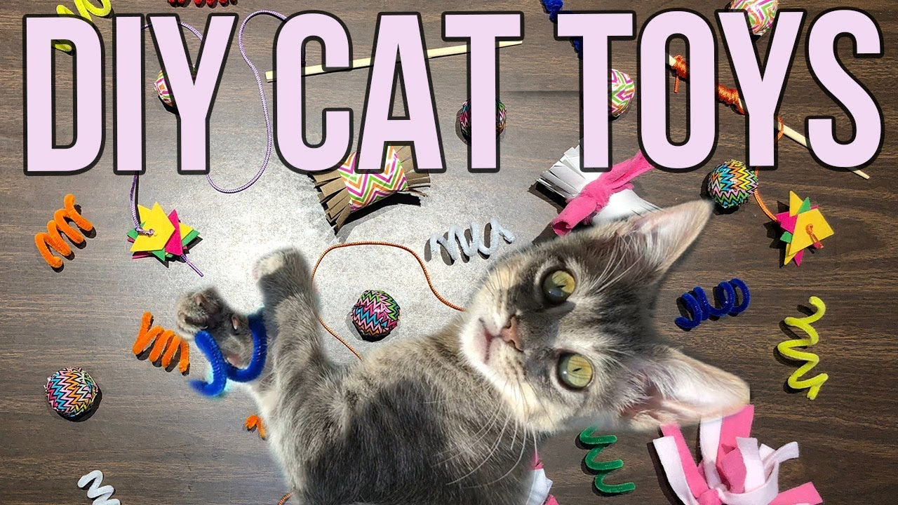5-easy-cat-toys-kids-can-make-at-home