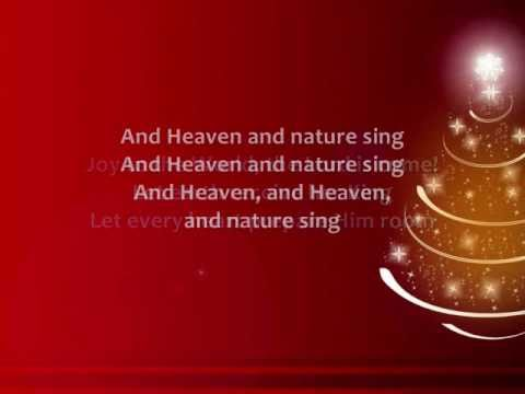 Chris Tomlin - Joy to the World (unspeakable Joy) - Lyrics