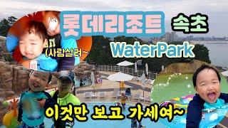 롯데리조트 속초 워터파크 수영장 물놀이  꿀잼보장^^ …