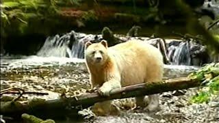 Globo Repórter - Operação Ushuaia no Canadá 31/05/2002