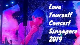 My Full BTS CONCERT Experience Movie - LOVE YOURSELF WORLD TOUR SINGAPORE 2019   V LIFESTYLE TV