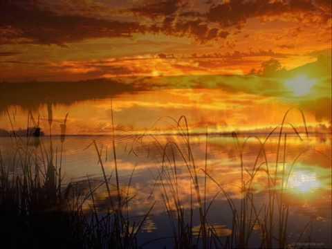 Texas - Summer Sun