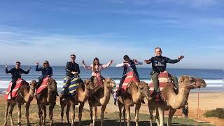 Montanto en Camello Morocco 2017