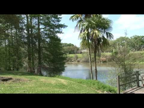 What's really in the water in Bayou Lafourche?