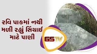 Narmada : રવિ પાકમાં નથી મળી રહ્યું સિંચાઈ માટે પાણી | Gstv Gujarati News