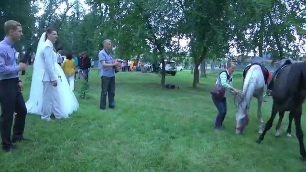 свадебные фотографы шадринск выяснения этого момента