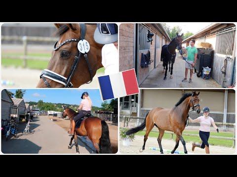 Kriss zijn eerste VET-CHECK & Trainen met Enzos 🌟  || CDI Deauville deel 2 🇫🇷 ||