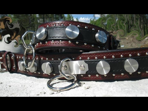 how to make a dog collar youtube