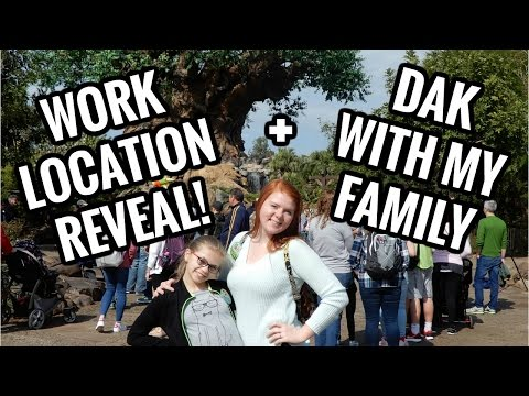 Work Location Reveal! | Disney College Program