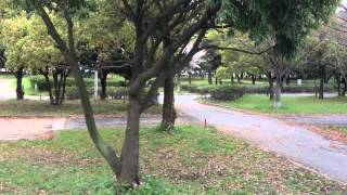 出張BBQ満福大阪 岸和田市地蔵浜公園バーベキュー広場