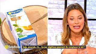 Soja, amande, riz...les jus végétaux peuvent-ils remplacer le lait ?