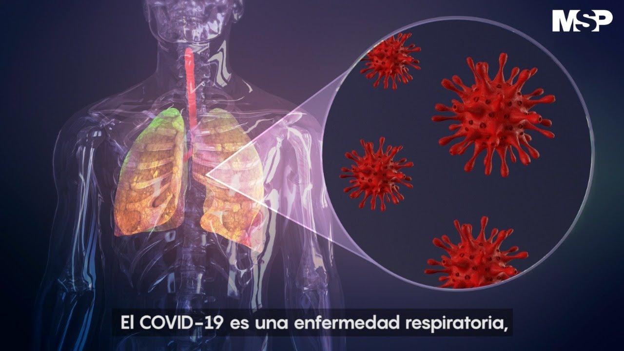 Así ataca el #coronavirus al cuerpo humano - YouTube