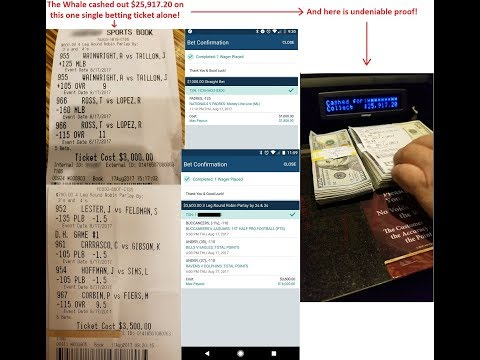 The Sports Betting Whale Answers: Can You Get Rich from Betting on Sports?