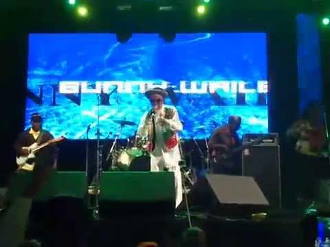 Bunny Wailer ao vivo no Estância Alto da Serra, São Bernardo do Campo - SP (20/11/14)