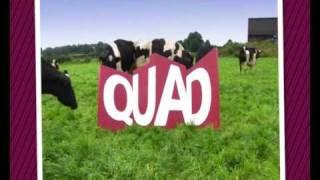 QUAD Showreel promo