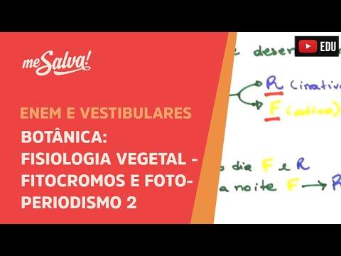 me-salva!-bot35---botânica---fisiologia-vegetal:-fitocromos-e-fotoperiodismo-ii