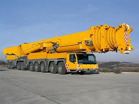 Cranes History