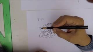 Dibujo de Columna vertebral