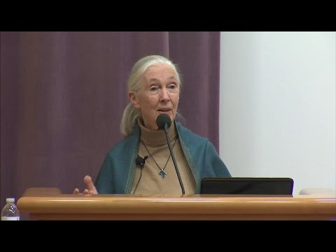 "Dr. Jane Goodall on ""The Intersection Between Health, Gender and Conservation"""