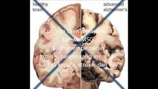 bahaya MSG penyedap rasa.wmv