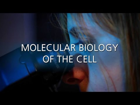 Molecular Biology of Cell (MBC) - Master Degree, University of Milan