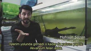 Petshopcu - Bir Dal Hayat #2