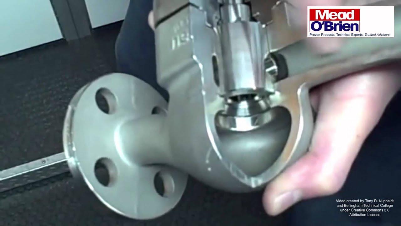 The rotary globe control valve youtube the rotary globe control valve publicscrutiny Gallery