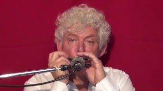 Tims Tiny Tunes #224   Level 1, Harmonica play-along lessons   Jazz harmonica licks (lr)