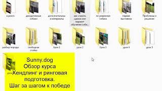Видео обзор курса Хендлингю ринговая подготовка
