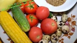 летний салат с овощами, кукурузой и перепелиными яйцами, оригинальный рецепт, 482 развлечения для ум