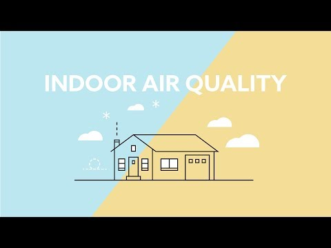 Indoor Air Quality 101 | Causes, Effects and Solutions